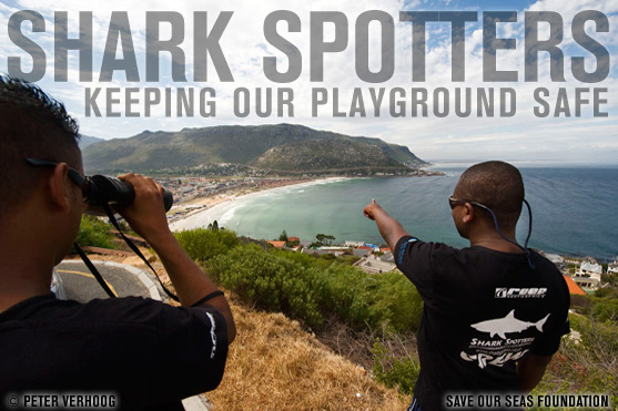 False Bay Shark Spotters