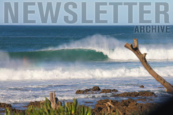 Learn 2 Surf Newsletter Archive